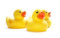 Rubber ducks yellow isolated on the white background Stock Images