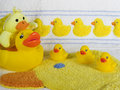 Rubber duckys ducky bathroom accessory set Royalty Free Stock Photos