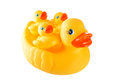 Rubber yellow duck family - mother duck and little ducky isolate Royalty Free Stock Photo