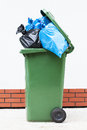 Rubbish sacks in bin blue and black sucks a green litter Royalty Free Stock Image
