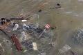 Rubbish svävar på floden Royaltyfri Foto