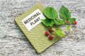 Rubus idaeus raspberry and directory medicinal plant red or occasionally as european herbalist handbook on old wooden Stock Photo