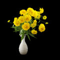 Rudbeckia flowers in vase iosolated Stock Image