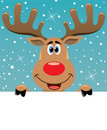 Rudolph deer holding blank paper for your text Royalty Free Stock Images