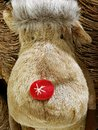 Rudolph the red nosed reindeer Royalty Free Stock Photo