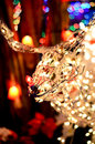Rudolph Red Nosed Reindeer Christmas Light Display Royalty Free Stock Photo