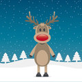 Rudolph reindeer with red nose Royalty Free Stock Photo