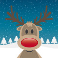 Rudolph reindeer red nose Royalty Free Stock Photos