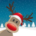 Rudolph reindeer red nose and hat Stock Photos