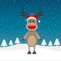 Rudolph reindeer red nose and hat Royalty Free Stock Photos