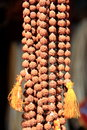 Rudraksha prayer beads buddhist or hindus japa mala made of Royalty Free Stock Images