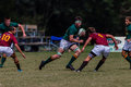 Rugby action of st teams high school players of mature young men between paul roos gymn and glenwood boys high school at the Royalty Free Stock Photography