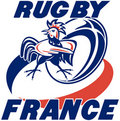 Rugby ball france rooster cockerel Royalty Free Stock Photography