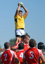 Rugby line out in dinamo bucharest csm bucharest and players pictured action during the romanian superleague play off game between Stock Image