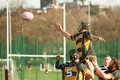 Rugby line out player about to catch a ball during askeans versus edenbridge union football clubs on saturday the rd of Royalty Free Stock Photos