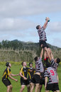 Rugby in new zealand kaitaia nz aug people plays on aug union is the unofficial national sport of nz the national team the all Royalty Free Stock Images