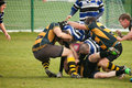 Rugby rock players in a big during askeans versus edenbridge union football club on saturday the rd of march Royalty Free Stock Photo