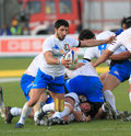 Rugby test match Italy vs Samoa; Tebaldi Royalty Free Stock Photography