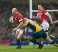 Rugby Union - Wales Vs Australia Royalty Free Stock Photo