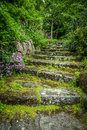 Rugged garden steps in a beautiful with plants growing in between the stones Stock Images