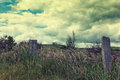 Rugged overgrown landscape and with barbed wire fence and creepy mansion in the distance on the hill Royalty Free Stock Photography