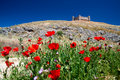 Ruined castle overlooks poppy field Stock Photography