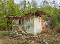 Ruined house in the forest Royalty Free Stock Photo
