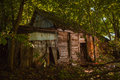 A ruined house in forest Royalty Free Stock Photo