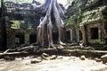 Ruined Temple, Cambodia Royalty Free Stock Photo