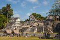Ruins of the ancient Mayan city of Tikal Royalty Free Stock Photo