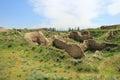 The ruins of Ancient Panjekent near modern Penjikent city, Tajikistan Royalty Free Stock Photo