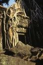 Ruins- Angkor Wat, Cambodia Stock Photography