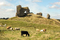 Ruins of the castle clonmacnoise ireland outside walls medieval monastery on banks shannon Royalty Free Stock Photography