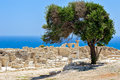 Ruins of an early christian basilica on cyprus in ancient town kourion Stock Photography