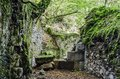 Ruins in the forest picture at inside from one long time ago forgotten factory one image with great colors and details witch can Stock Photo