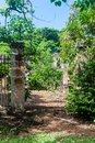 Ruins of a former penal colony at Ile Royale Royalty Free Stock Photo