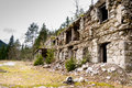 Ruins of old building in forest surrounded with trees Royalty Free Stock Photo
