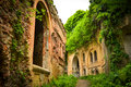 The ruins of the old military fort conquered by nature Royalty Free Stock Photo