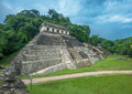 Ruins of palenque mexico ancient Royalty Free Stock Image