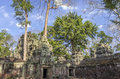 Ruins of ta prohm in siem reap cambodia temple at angkor province Stock Photo