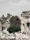 Ruins and Tree Royalty Free Stock Images