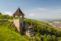 Ruins of the Trencin medieval castle