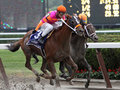 Ruler on Ice Wins The 2011 Belmont Stakes Stock Images