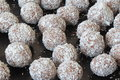 Rum chocolate balls the chololate on the platter Royalty Free Stock Image
