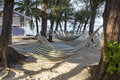 Rum Point Hammocks Stock Image