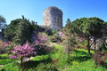 Rumeli hisari fortress and judas trees in springtime Royalty Free Stock Image