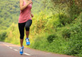 Runner athlete running on forest trail woman fitness jogging workout wellness concept Stock Photos