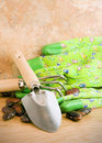 Runner beans with gardening tools on wooden floor Stock Images