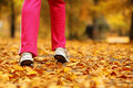 Runner legs running shoes woman jogging in autumn park and sporty walking outdoors on forest path fall colors golden leaves Stock Images
