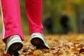 Runner Legs Running Shoes. Wom...